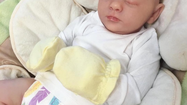 Bebes reborn Villanueva de la Cañada – Madrid